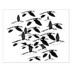 Little Auk Flock Posters
