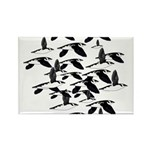 Little Auk Flock Magnets