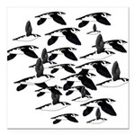 Little Auk Flock Square Car Magnet 3
