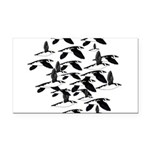 Little Auk Flock Rectangle Car Magnet
