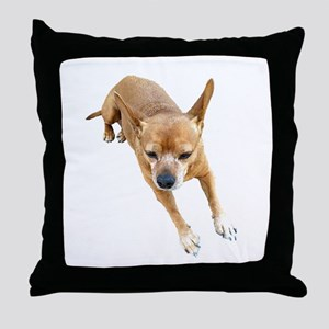 Chiweenie On Break Throw Pillow