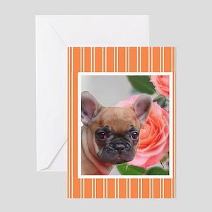 Orange French Bulldog Greeting Cards