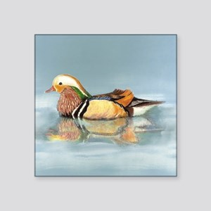 Wood Duck Watercolor Bird Sticker