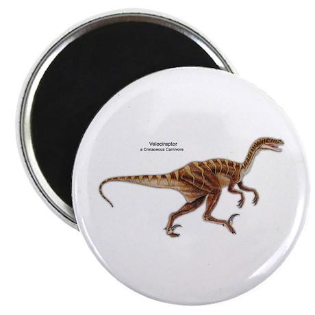 Velociraptor Dinosaur Carnivore Magnet