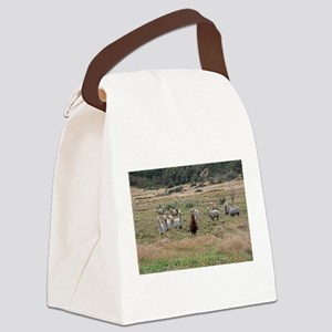 Cajas llamas Canvas Lunch Bag