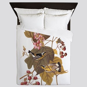 Black and Yellow Warbler Vintage Audubon Queen Duv