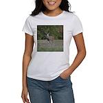 Four Point Buck Women's T-Shirt