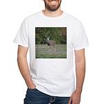 Four Point Buck White T-Shirt
