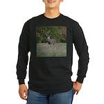 Four Point Buck Long Sleeve Dark T-Shirt