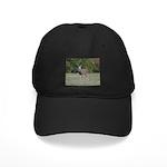 Four Point Buck Black Cap