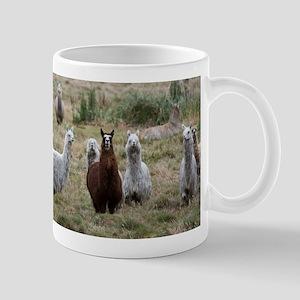 Cajas llamas Mugs