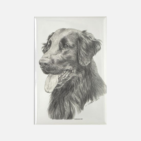 Flat Coated Retriever Rectangle Magnet