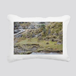 Cajas low land wolf Rectangular Canvas Pillow