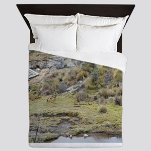 Cajas low land wolf Queen Duvet