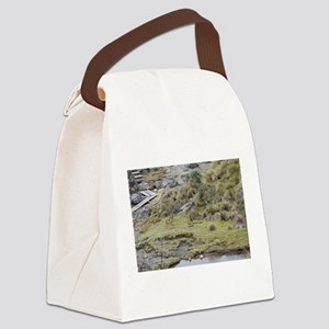Cajas low land wolf Canvas Lunch Bag
