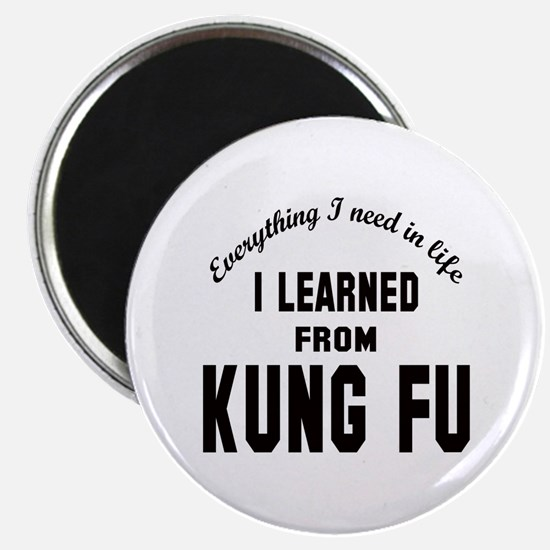 """I learned from Kung-fu 2.25"""" Magnet (10 pack)"""