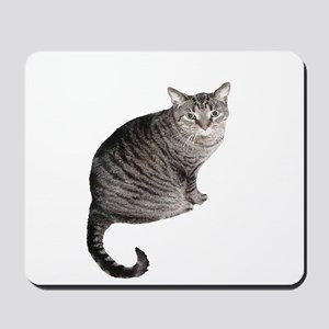 Gray Stripped Cat Mousepad