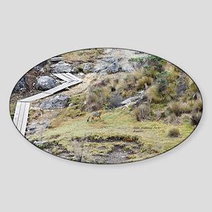 Cajas low land wolf Sticker