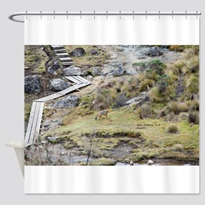 Cajas low land wolf Shower Curtain