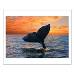 WHALE DREAMS Small Poster