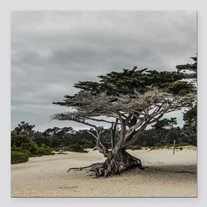"Carmel Beach Landscape Square Car Magnet 3"" x 3"""