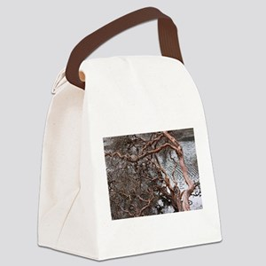 Cajas Canvas Lunch Bag