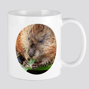 Muskrat Feeding on Grass Mugs