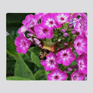 Humming moth on phlox Throw Blanket