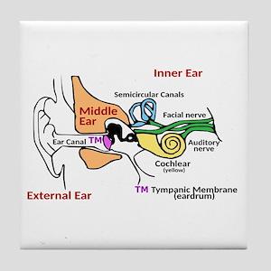 Ear coasters cafepress ear diagram labeled tile coaster ccuart Images