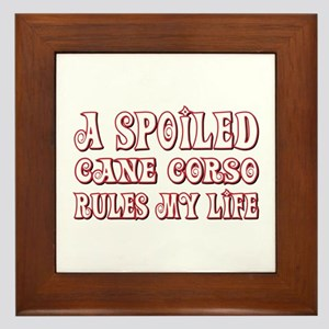 Spoiled Corso Framed Tile