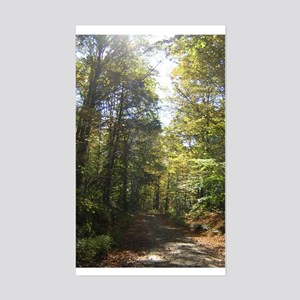 Sun and Trees The Berkshires Rectangle Sticker