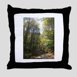 Sun and Trees The Berkshires Throw Pillow
