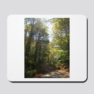 Sun and Trees The Berkshires Mousepad