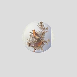 Cedar Waxwing Birds Mini Button