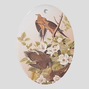 Audubon Carolina Turtle Dove Design Oval Ornament