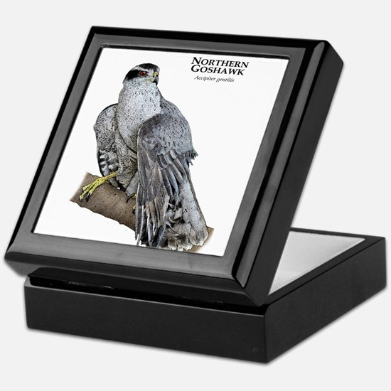 Northern Goshawk Keepsake Box