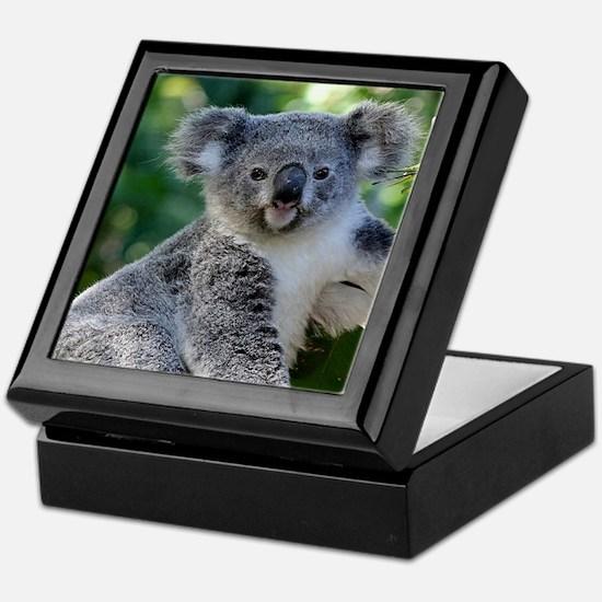 Cute cuddly koala Keepsake Box