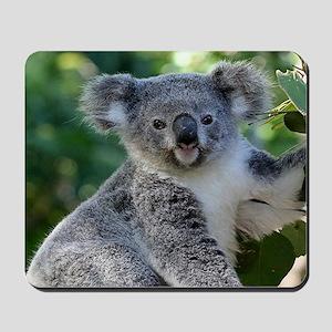 Cute cuddly koala Mousepad