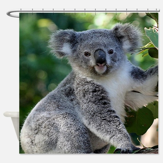 Cute cuddly koala Shower Curtain
