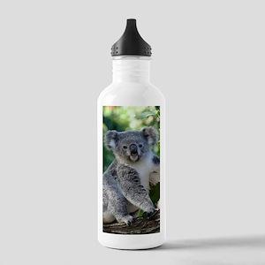 Cute cuddly koala Stainless Water Bottle 1.0L