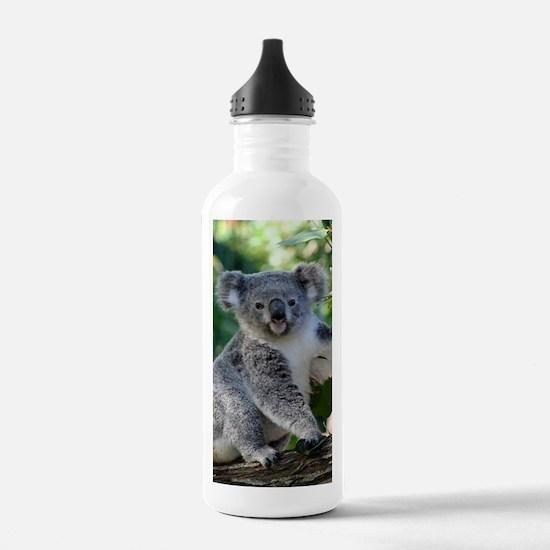 Cute cuddly koala Water Bottle