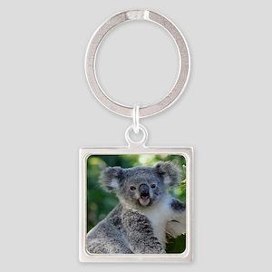 Cute cuddly koala Keychains