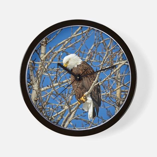 Magnificent Bald Eagle Wall Clock