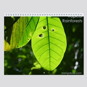 Tropical Rainforests Wall Calendar