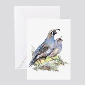 Watercolor California Quail Bird Na Greeting Cards
