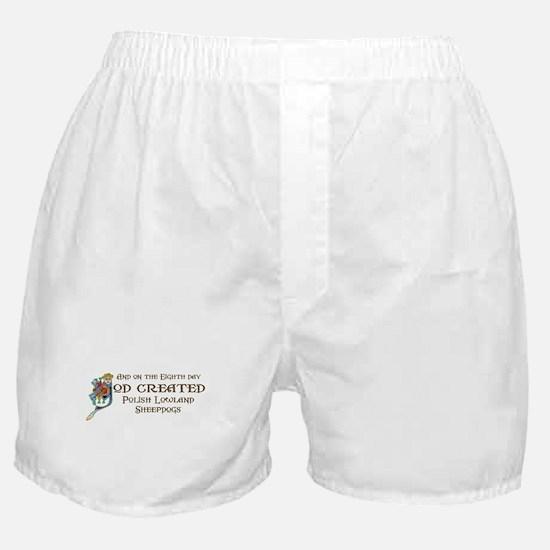God Created PLSs Boxer Shorts