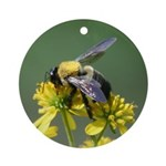 Bumblebee on Crownbeard Ornament (Round)