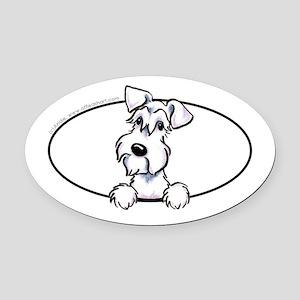 Schnauzer White Peeking Oval Car Magnet