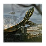 Basking Turtle Tile Coaster