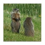 Standing Groundhogs Tile Coaster